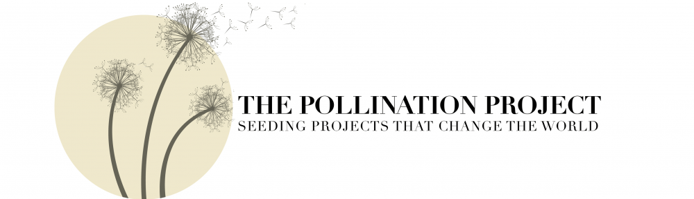 The Pollination Project Grant Award